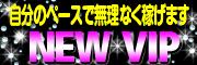 NEW VIP(ニュービップ)