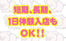 虹色メロンパイのLINE応募・その他(仕事のイメージなど)