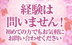 姫花のLINE応募・その他(仕事のイメージなど)