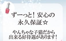 やんちゃな子猫のLINE応募・その他(仕事のイメージなど)