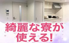 スピード京橋店のお店のロゴ・ホームページのイメージなど