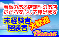 蒲田ハワイのお店のロゴ・ホームページのイメージなど