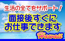 蒲田ハワイのLINE応募・その他(仕事のイメージなど)