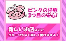 大阪ぽっちゃり巨乳専門・ピンクの仔豚のLINE応募・その他(仕事のイメージなど)