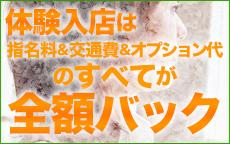 仙台人妻援護会のLINE応募・その他(仕事のイメージなど)