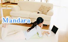 Mandara~マンダラ~のお店のロゴ・ホームページのイメージなど
