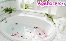 Ageha(アゲハ)の店内・待機室・店外写真など
