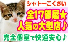 シャトーこくさいのLINE応募・その他(仕事のイメージなど)