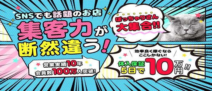 爆乳・肉食系・ぽちゃカワイイ専門店