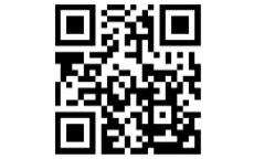 黒蝶-KURO AGEHA-のLINE応募・その他(仕事のイメージなど)