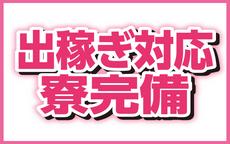 安城刈谷豊田二度抜きのお店のロゴ・ホームページのイメージなど
